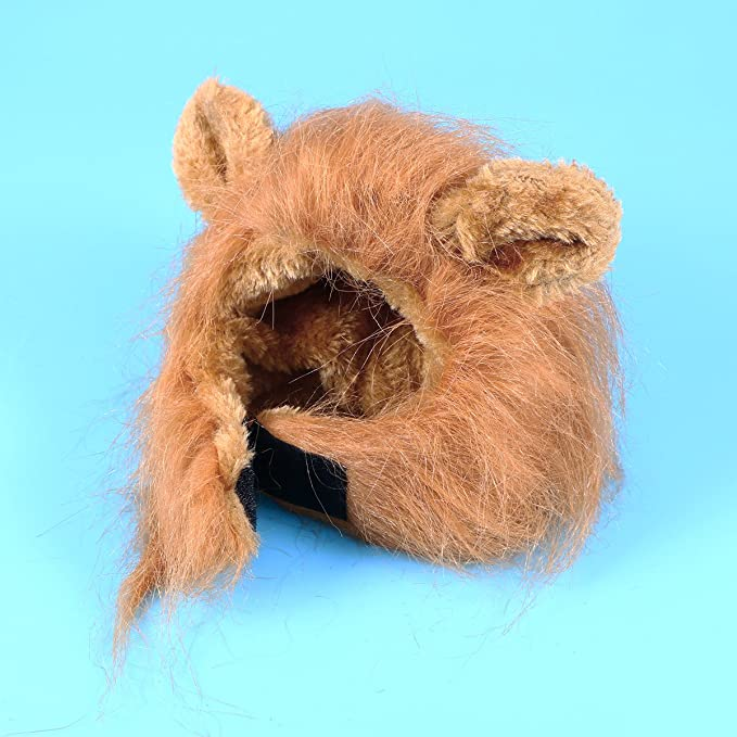 Amazon.com : UEETEK Cat Lion Mane Costume Pet Cat Small Dog Lion ...