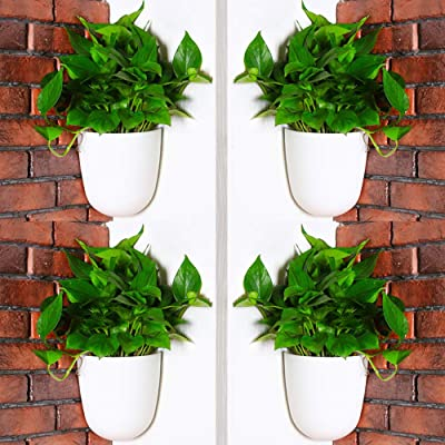 Sungmor Corner Planter Wall Mounted Plant Pots - Self Watering Vertical Hanging Planters - 4PC White Pack - Right Angle Flower Pots Plant Containers - Great Home Office Kitchen Wall Corner Decor Pots : Garden & Outdoor