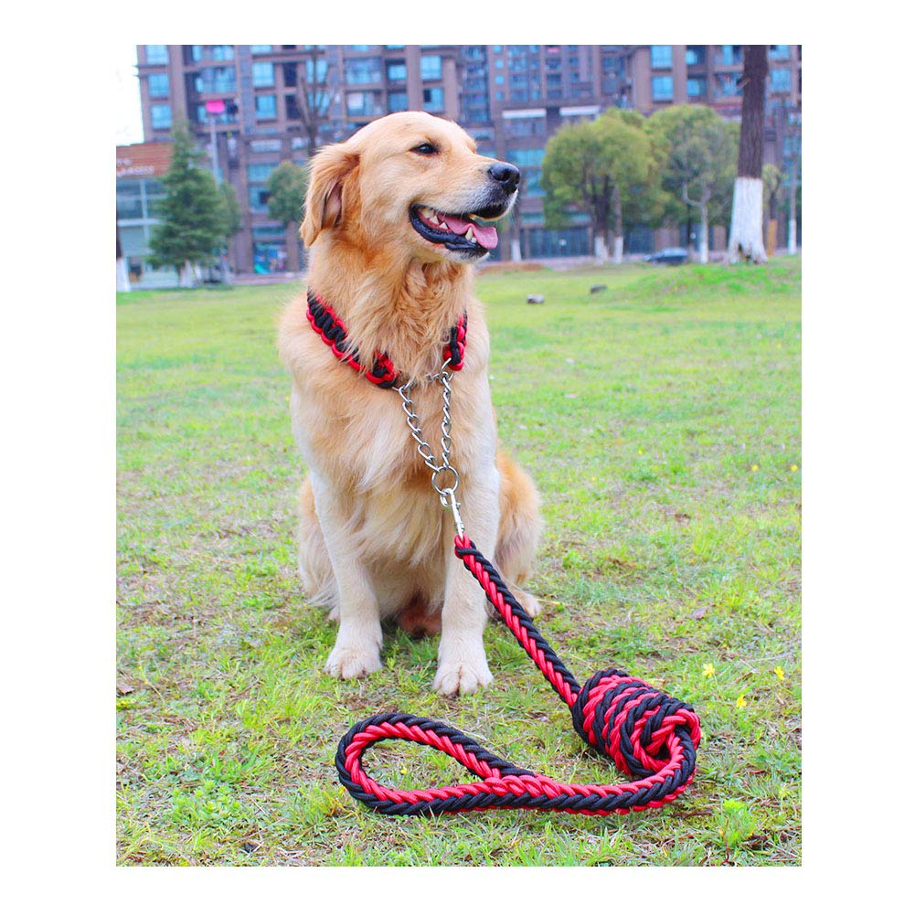 Red and black combination XL Red and black combination XL JRPets Dog Leash 5 feet Two-color Collar Eight-Strand Rope P-Chain Large Medium Dog Labrador, golden Retriever,Shepherd Dog, Leash and Collar Combination (XL, Red and Black Combination)