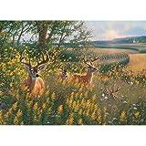 Cobble Hill 51789 - Sieve: Summer Deer - puzzle 1000 piezas