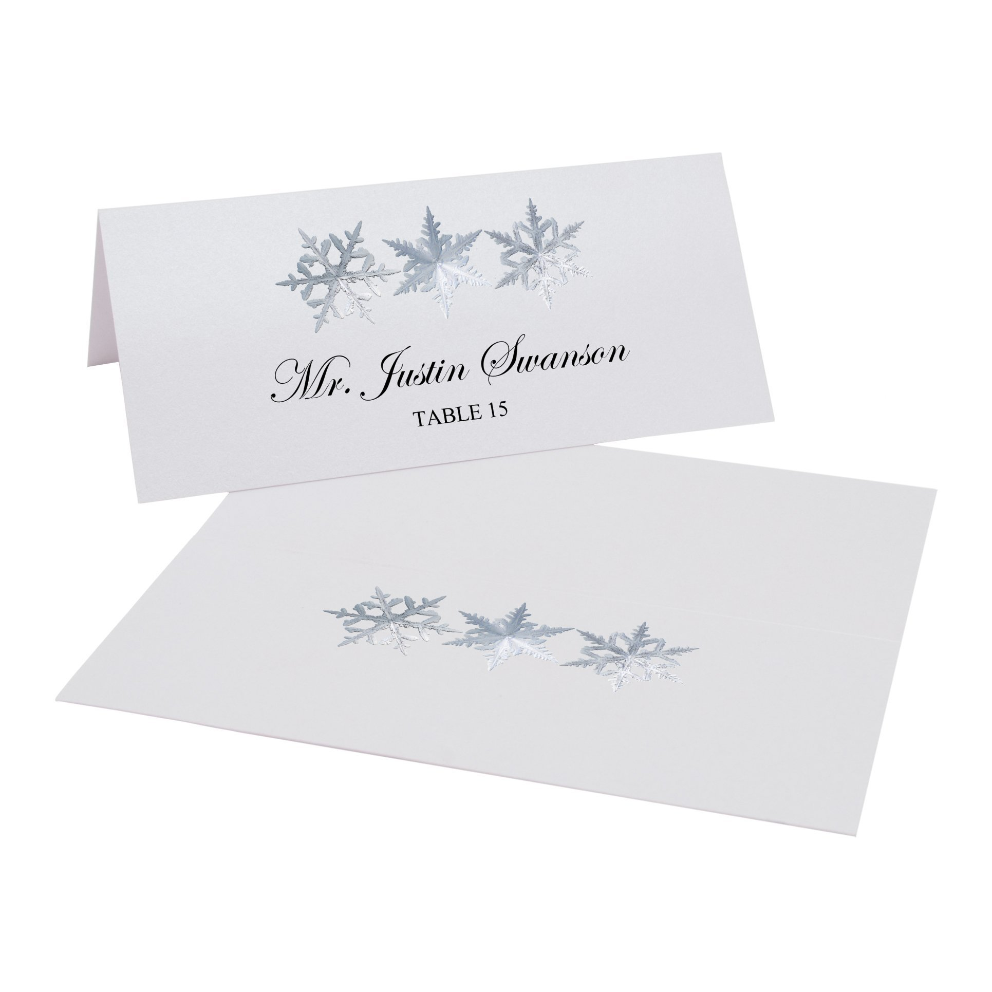 Snowflake Pattern Place Cards, Pearl White, Set of 375 by Documents and Designs