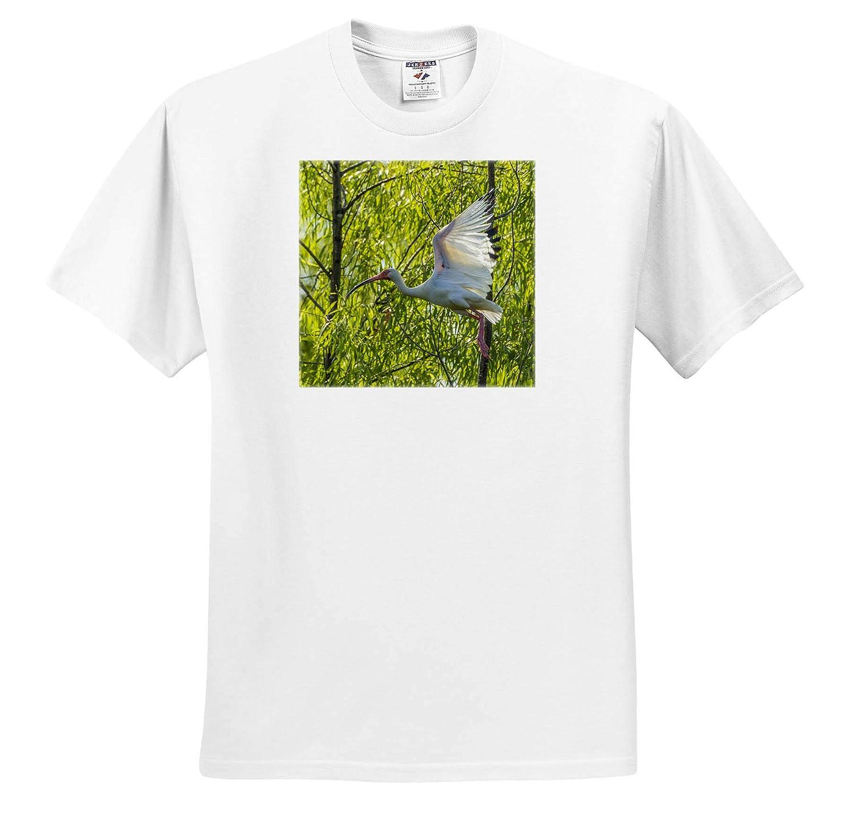 White ibis in Flight USA ts/_314828 - Adult T-Shirt XL Birds Louisiana Millers Lake 3dRose Danita Delimont