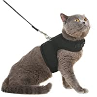 Escape Proof Cat Harness with Leash - Adjustable Soft Mesh - Best for Walking Medium