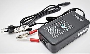 Cargador de batería SLA 12v/Cargador de 12v mantenedor/Batería de vehículo 12V/Cargador de batería de la Vespa 12v