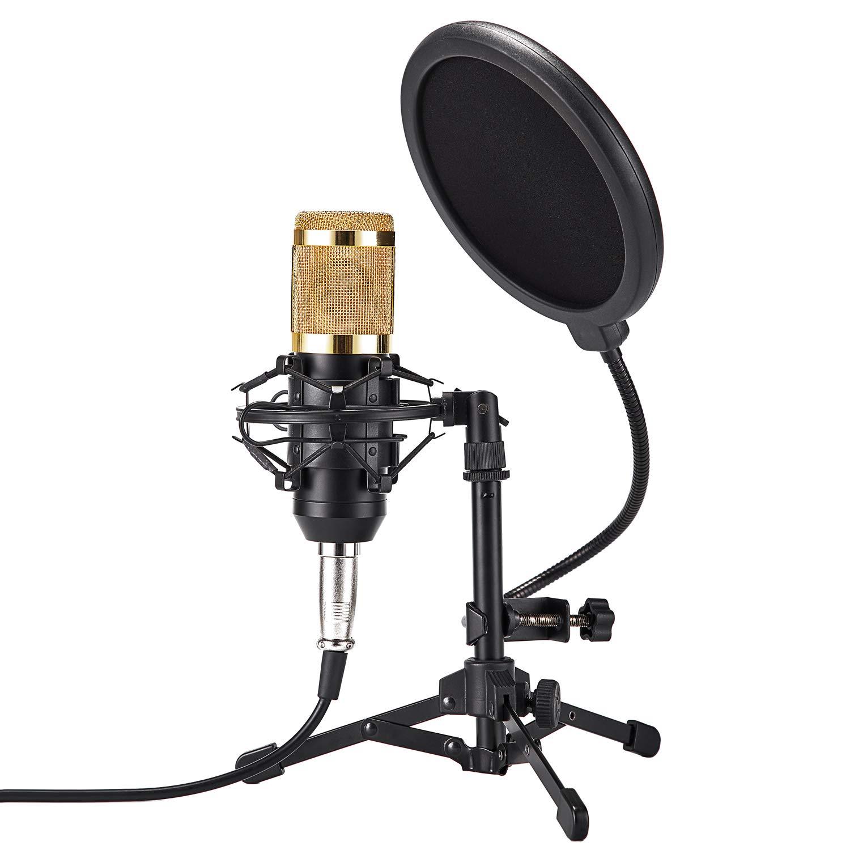 ZINGYOU Set de micrófonos de escritorio ZY-801 + Micrófono de condensador Professional Studio Cardioid PC Mic Bundle par