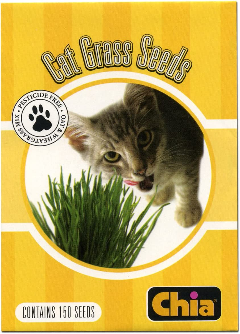 Chia Cat Grass Seeds Refill, 6 Count, Snoozing Kitty, Pack of 6
