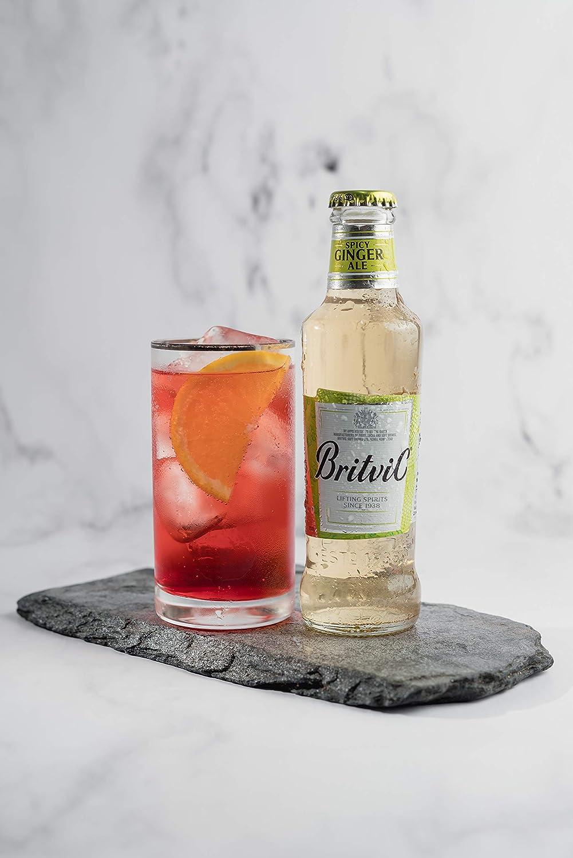 Britvic Ginger Ale 24 x 200 ml: Amazon.es: Alimentación y bebidas