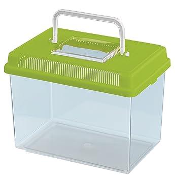 Feplast 60021099W2 Acuario para Peces Geo Medium, Plástico Robusto, Asa para Un Fácil Transporte, 23.2 x 15.3 x 16.6 Cm - 2.5 L Verde: Amazon.es: Productos ...