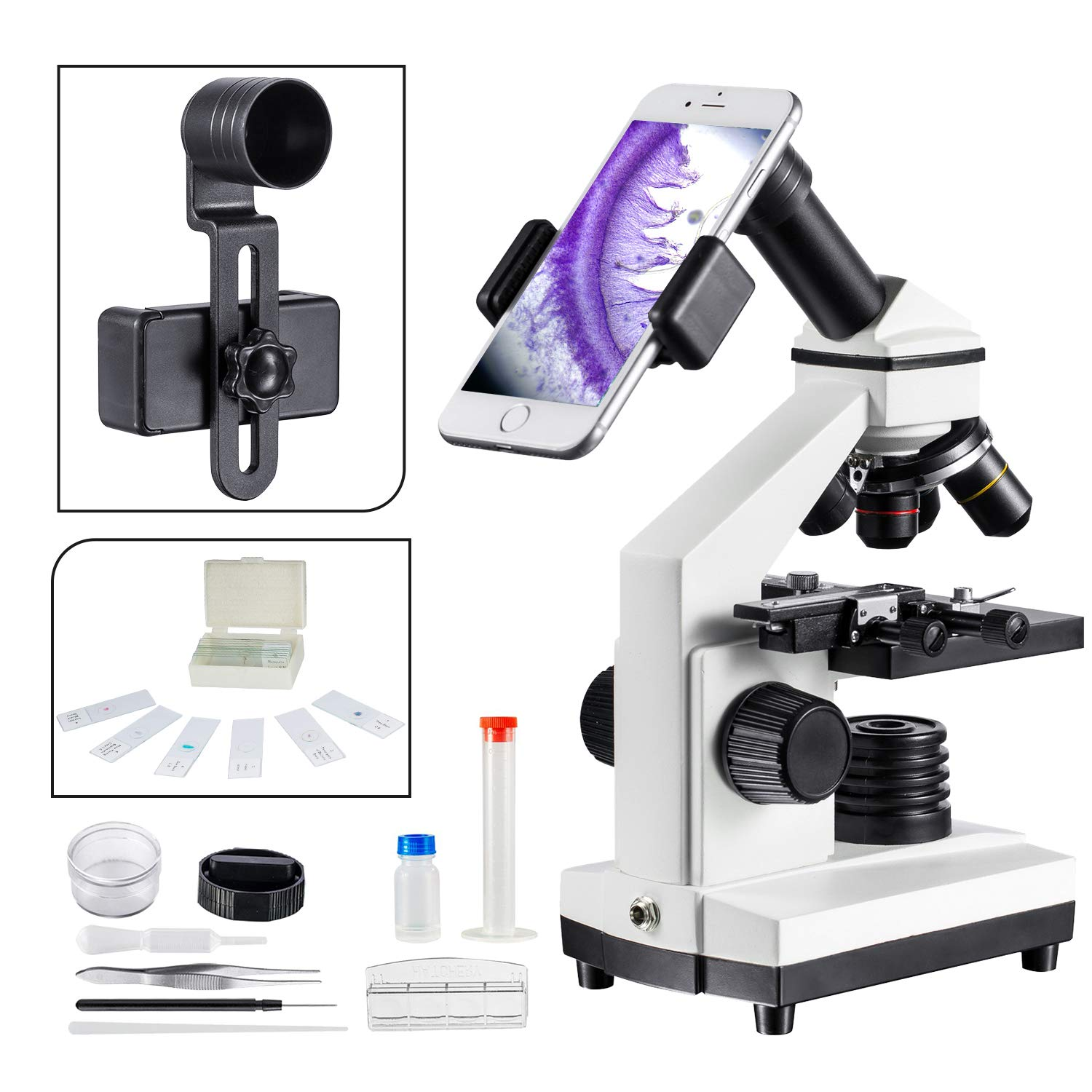 1000x Compound Microscope for Students with Prepared Slides Kit Suitable for School Teaching, Biological Research and Homeschool Learning Nature MAXLAPTER