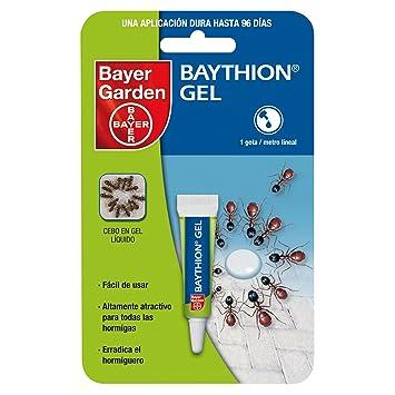 Bayer Garden Baythion Gel - Cebo en Gel Contra Hormigas de Uso en Interiores, 4g: Amazon.es: Jardín