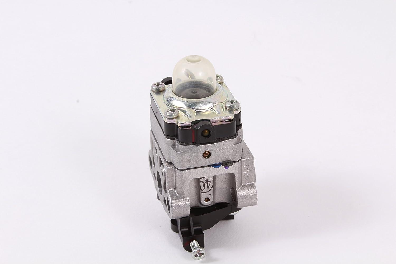 Amazon.com: Genuine MTD 753 – 08174 Carburador para MTD Pro ...