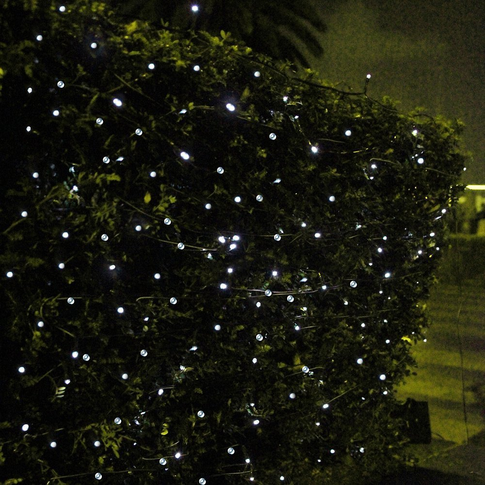 CroLED Solar Power 100 LEDs String Decoration Fairy Lights: Amazon.ca:  Patio, Lawn U0026 Garden