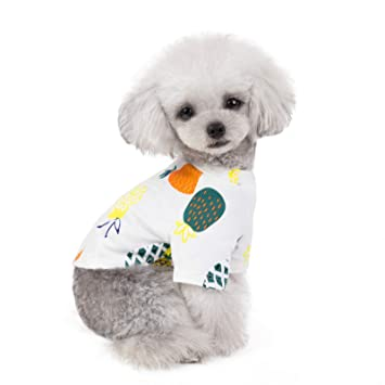 Amazon.com: Daimofs Ropa para mascotas, adorable camiseta de ...