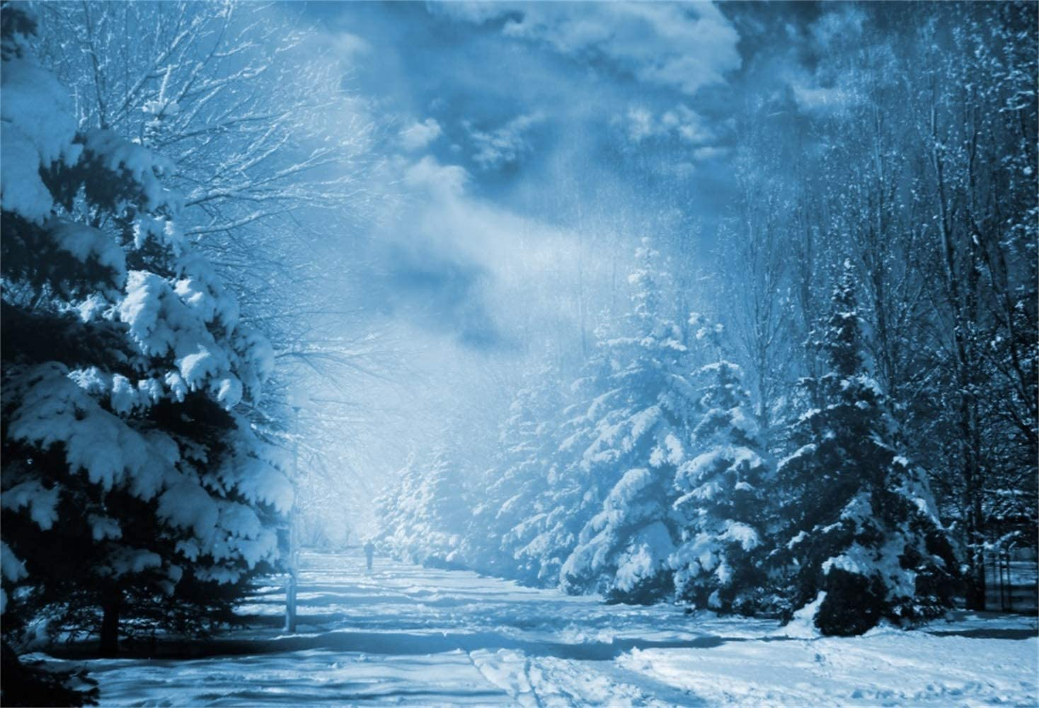 Laeacco 7x5ft Vinyl Beautiful Snowscape Photography Background Snowy Trees Road Cloudy Sky Winter Scenic Backdrops New Year Christmas Winter Party Decoration Child Adults Photo Studio Props