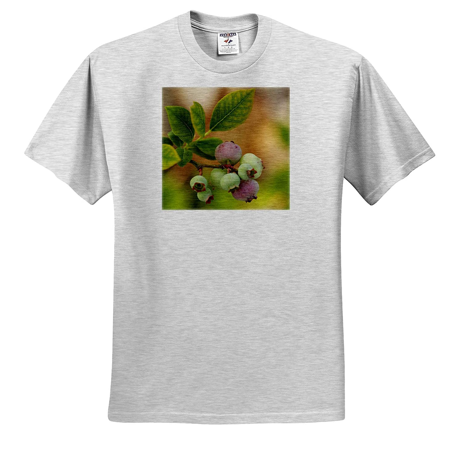 Plants - Adult T-Shirt XL 3dRose Stamp City Macro Photograph of a Cluster of unripened Blueberries ts/_312211