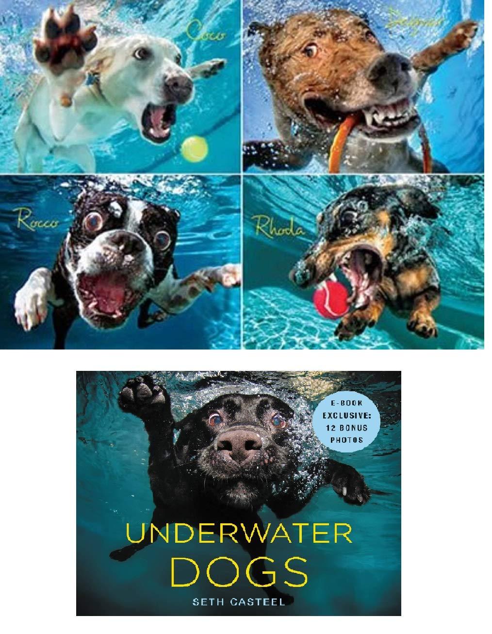 高価値 Underwater 1000ピース Underwater Dogs Pawty B07GVNBZY8 Pack Includes - Pool Pawty 1000ピース ドッグジグソーパズル ハードカバーブック B07GVNBZY8, 北浦町:8b26be9b --- a0267596.xsph.ru