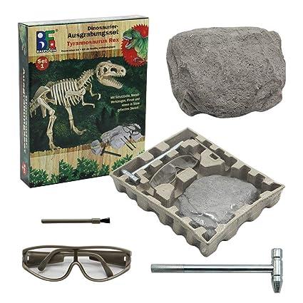 winemana Dinosaur Excavation Kit for Kids, Dino Fossil Dig Kits Dinosaur  Skeleton for Children's Excavation Science Education DIY Toys (T-Rex)