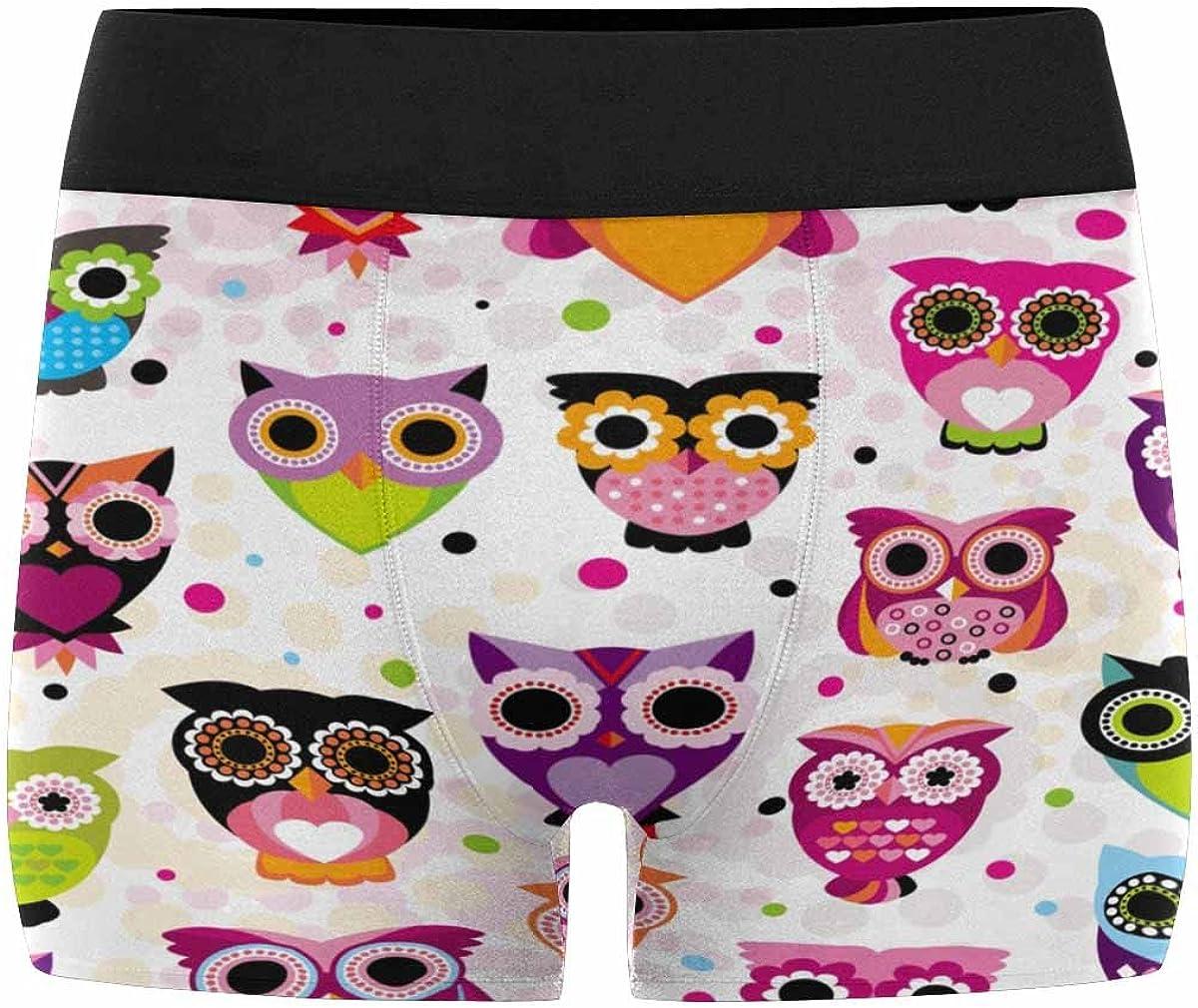 INTERESTPRINT Custom Mens All-Over Print Boxer Briefs Owl Pattern XS-3XL