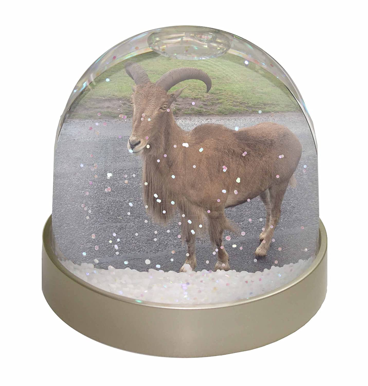 Advanta Cute Nanny Goat Photo Snow Globe Waterball Stocking Filler Gift, Multi-Colour, 9.2 x 9.2 x 8 cm Advanta Products GOAT-1GL