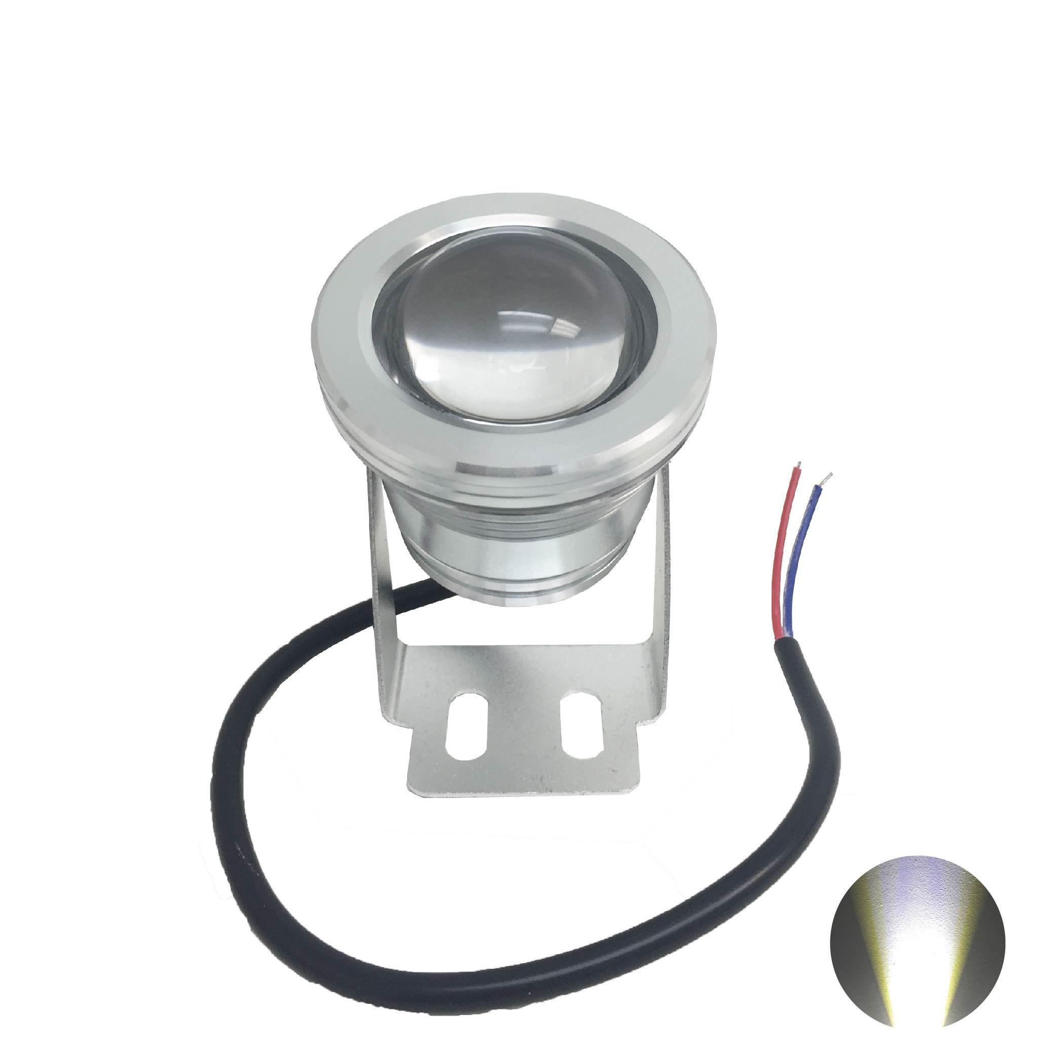 DEMASLED - 10W 12V Cool Withe LED Flood Light + Remote Control. Light Lamp for Landscape Fountain Pond Lighting