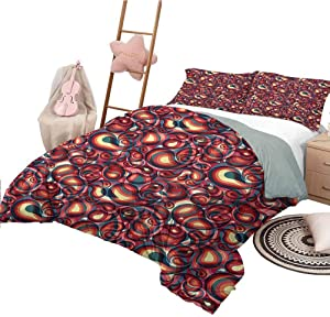 Nomorer Quilt Set with Sheets Full Size Paisley Modern Quilt Cover Reversible&Decor Modern Paisley