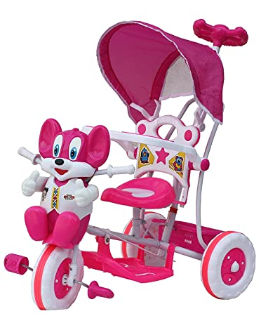 Buy baby birthday gift baby tricycle for 1 year 3 years with baby birthday gift baby tricycle for 1 year 3 years with shade and parental negle Choice Image