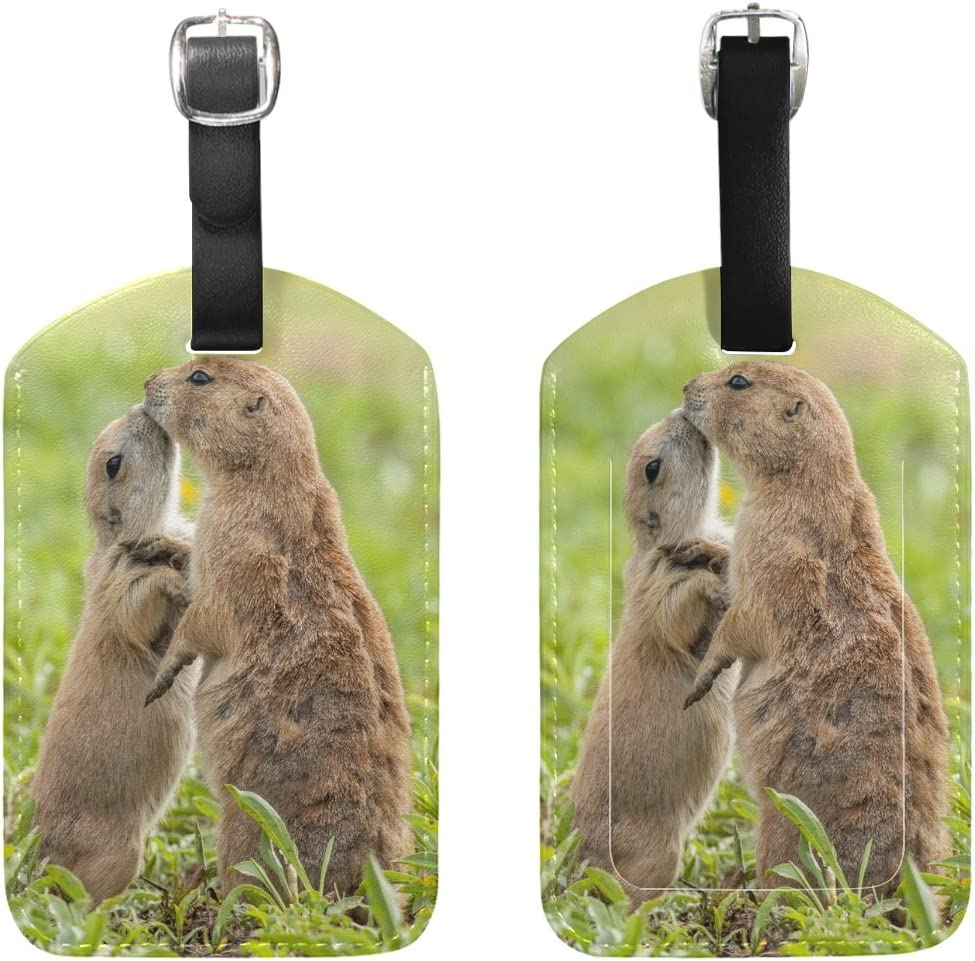 Chen Miranda Black-Tailed Prairie Dog Luggage Tag PU Leather Travel Suitcase Label ID Tag Baggage claim tag for Trolley case Kids Bag 1 Piece