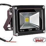 GLW 12V-24V AC or DC LED Flood Light,10W Mini IP65 Waterproof Outdoor Light,900LM,6000K,Daylight White Security Light,80W Halogen Bulb Equivalent