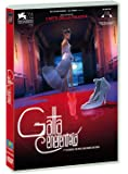 Gatta Cenerentola (DVD)