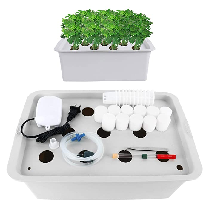 Homend Indoor Hydroponic Grow Kit with Bubble Stone, 11 Plant Sites (Holes) Bucket, Air Pump, Planting Sponges - Best Indoor Herb Garden for Plants - Grow Fast at Home