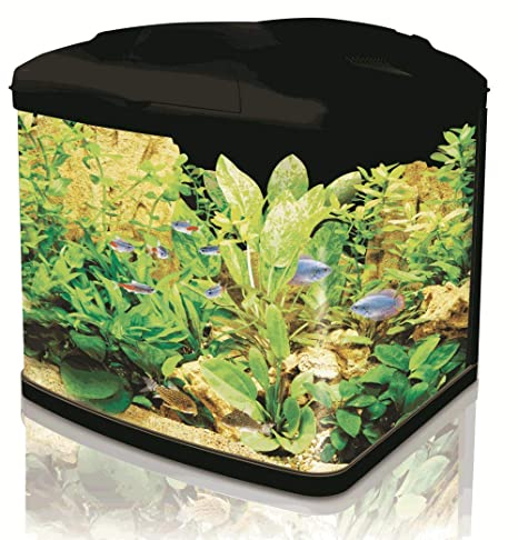 Interpet Acuario con sistema de filtro de cartucho