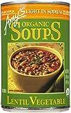 Amy's Lentil Vegetable Soup, Low Salt, 14.5 oz