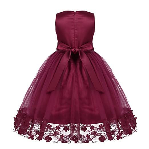Amazon.com: CHICTRY Kids Little Girls Lace Applique Party Princess Wedding Pageant Ball Gown Flower Dresses: Clothing