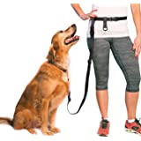 Adjustable Hands Free Dog Leash, Hand Leash for Running, Jogging And Training Service Dog Made in USA by The Buddy…