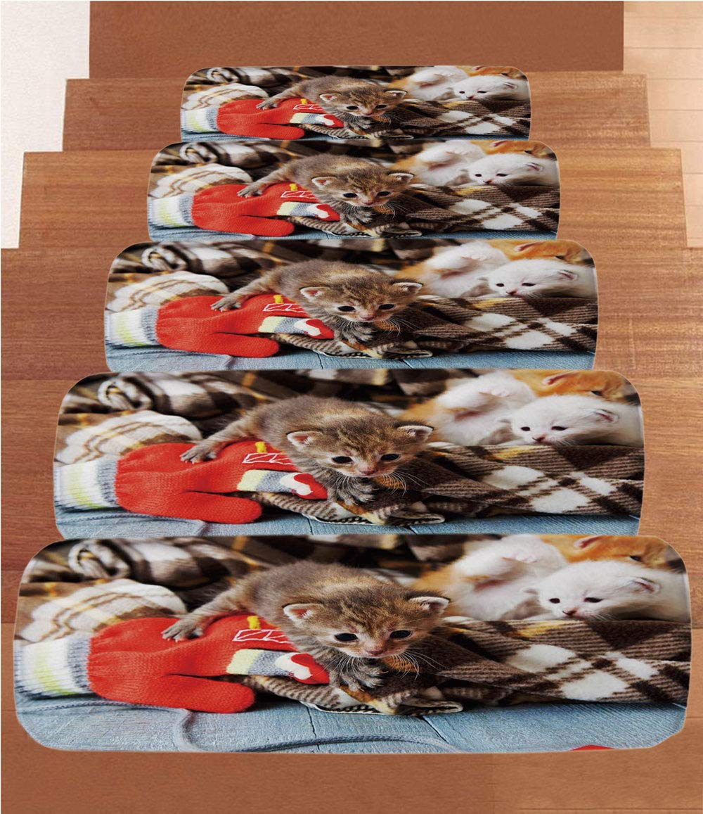 iPrint Non-Slip Carpets Stair Treads,Cats,Kittens and Mittens Newborns Baby Animals in an Plain Blanket Wood Play Toys Adorable,Multicolor,(Set of 5) 8.6''x27.5''