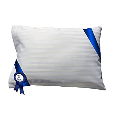 Travel-Toddler Pillow WITH PILLOWCASE Car Airplane