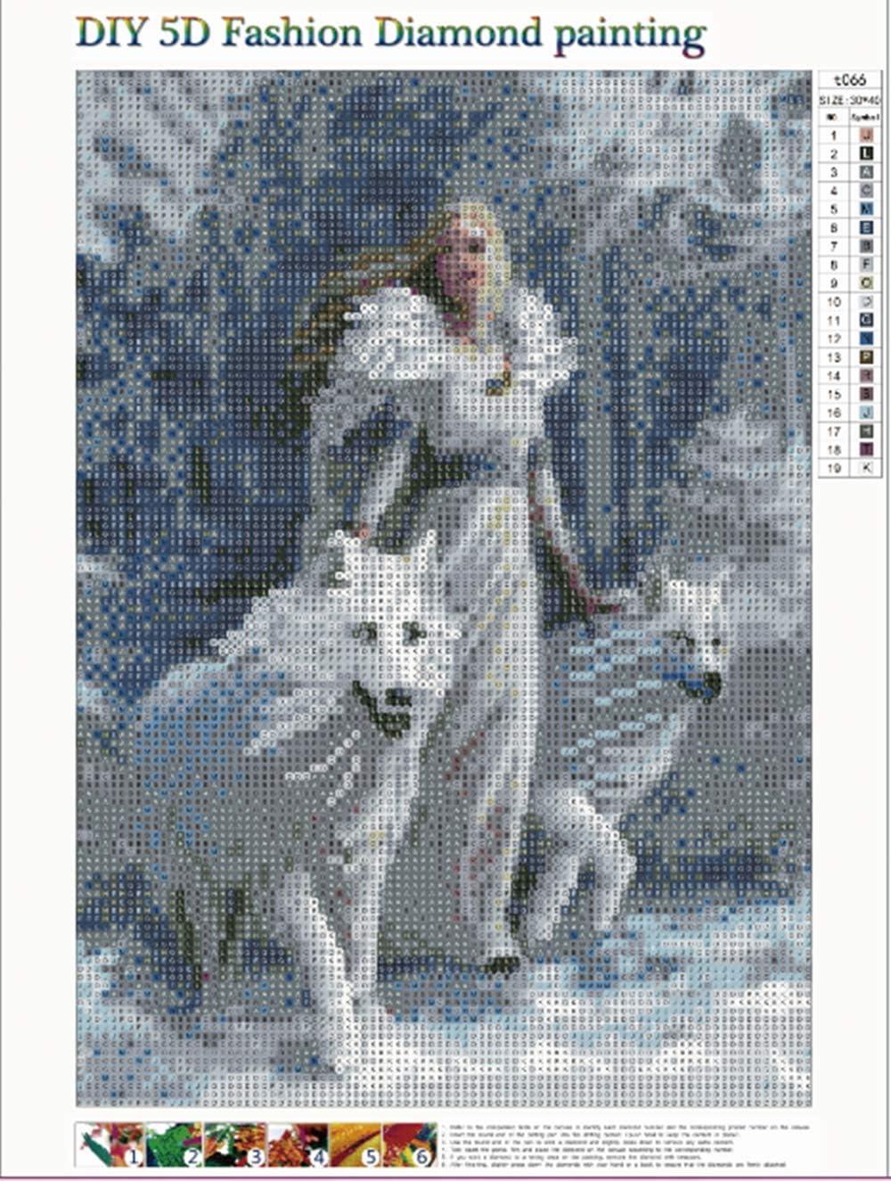 5D Diamant Gem/älde Kit,5D diamant painting Full Drill Prinzessin und Wolf DIY malen nach zahlen erwachsene Strass Stickerei Kreuzstich Kunst Handwerk f/ür Home Wand Decor 30x40cm
