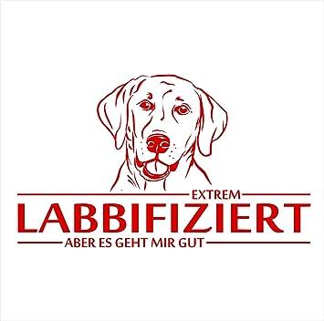 Siviwonder Auto Aufkleber Labrador Labbifiziert Hund Infiziert Hundeaufkleber 30cm Red Auto