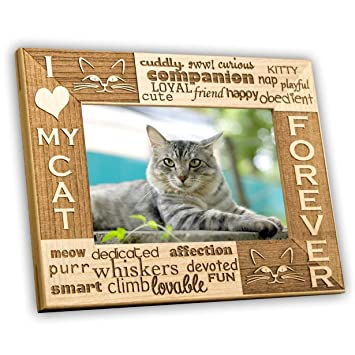 Amazoncom I Love My Cat 4x6 Picture Frame