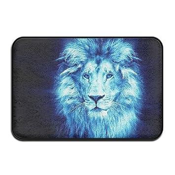 Door Mat Bathroom Rug Bedtoom Carpet Bath Mats Rug Non-Slip Watercolor Lion Head