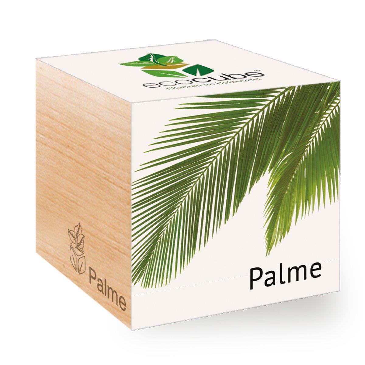Palme im Holzwü rfel Ecocube