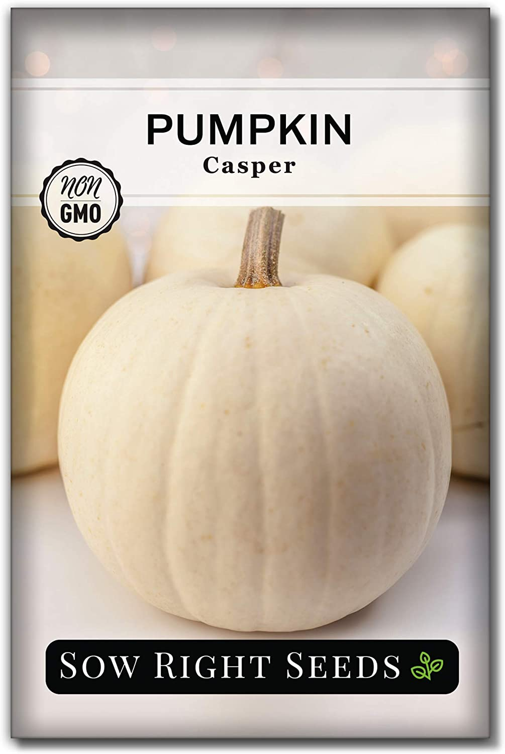 Sow Right Seeds - White Casper Pumpkin Seed for Planting - Non-GMO Heirloom Packet with Instructions to Plant a Home Vegetable Garden