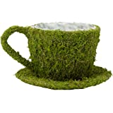 "Lillian Rose Teacup Decoration, 8.25 x 7.5"", Moss"