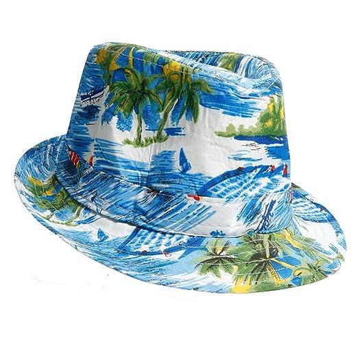 Amazon.com  Hayes Tropical Fedora  Clothing 98ad749ef8a