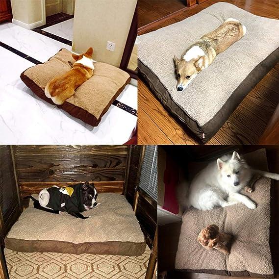 BYCWS Colchonetas para Perros Cama Grande para Perros Cojín Estera Colchón Suave Antideslizante Colchoneta para Perros Lavable 100% Mascotas Canillas ...