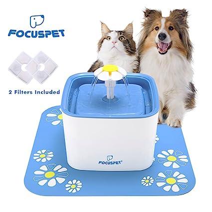 Focuspet Fuente de Agua para Gatos, Fuente de Agua Fuente de Agua para Gatos Fuente de ...