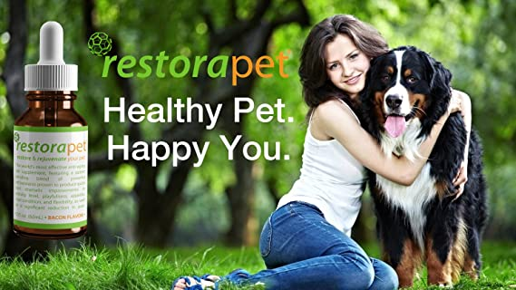 Amazon.com : RestoraPet Organic Pet Supplement For Dogs, Cats & Horses | Healthy & Safe Antioxidant Liquid Drops | Anti-Inflammatory Multi-Vitamin ...