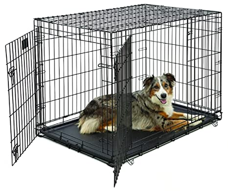 Midwest Life Stages Folding Metal Dog Crate Amazon In Pet Supplies