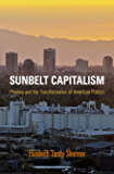 Sunbelt Capitalism: Phoenix and the Transformation of American Politics (Politics and Culture in Modern America)