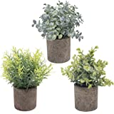 THE BLOOM TIMES Set of 3 Small Potted Artificial Plants Plastic Fake Greenery Faux Plants in Pots for Rustic Home Office…